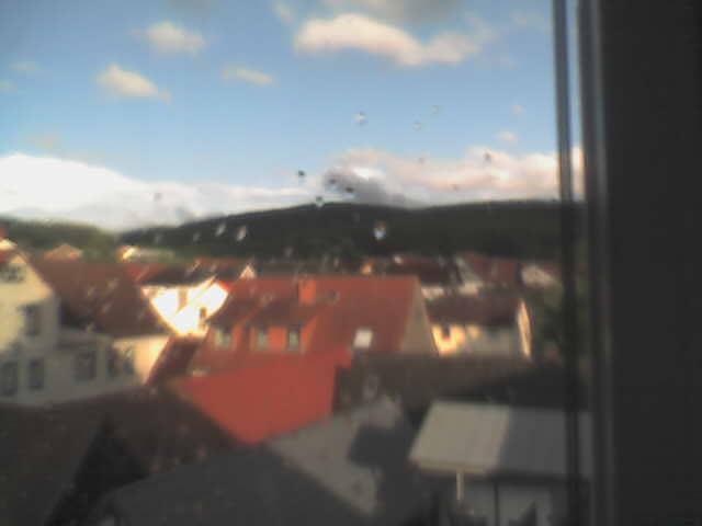 Live-Blick ueber Brandau
